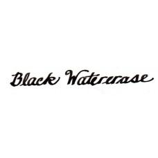 Black Watererase 4.5 oz (135 ml) with free pen