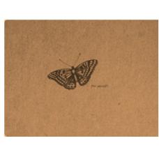 Flying Spirit A6 Sketchbook - Butterfly
