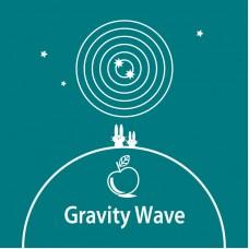 Gravity Wave (2 bottles)