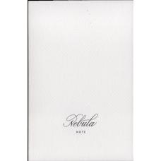 Nebula Notebook A5 cream - Tomoe River