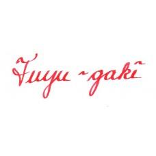 Iroshizuku fuyu-gaki 15ml