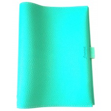 Pop A5 Notebook Cover - Clover